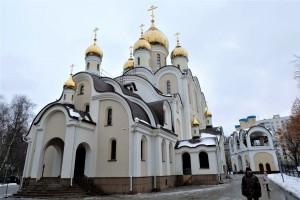 Храм Матроны Московкой в Дмитровском